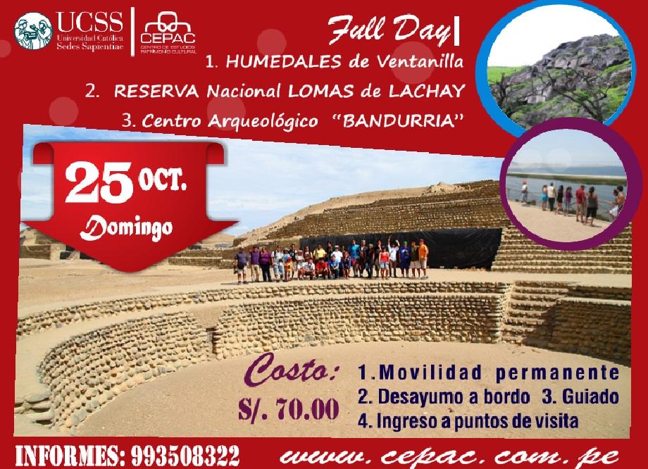 HUMEDALES-LOMAS DE LACHAY-BANDURRIA 25 DE OCTUBRE 2015